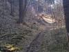 2012-03-21-12-23-25